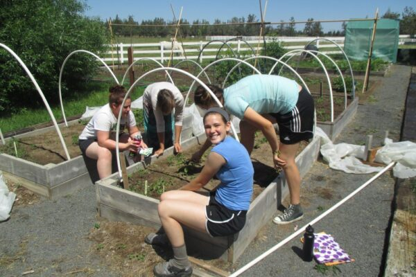 Students working in the garden as experiential learning