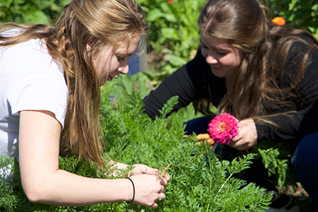 Girls working in an organic garden at their boarding school.