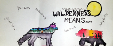 artwork about wilderness by a student at a therapeutic boarding school