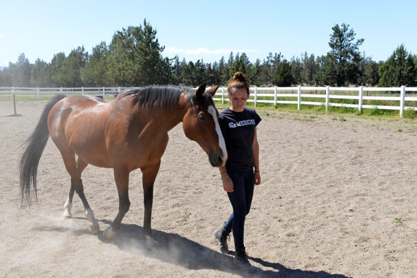 A key part of our program is interaction with horses, both as recreation and for equine assisted psychotherapy.